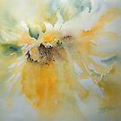 Sun Kissed by Ruth S Harris