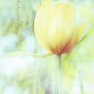Yellow Tulip For Love by Yannik Hay