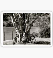 Anyone for a bike ride?  Sticker