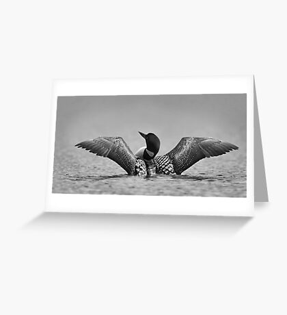 Common loon in black and white Greeting Card