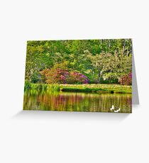 Another area of the pond Greeting Card