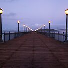 San Francisco bridge by madewithtubo