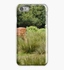 Fallow Deer, New Forest, Hampshire, England iPhone Case/Skin
