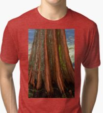 Cypress Tree Tri-blend T-Shirt