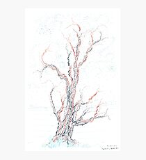 Genetic branches (hand drawn ink on paper) Photographic Print