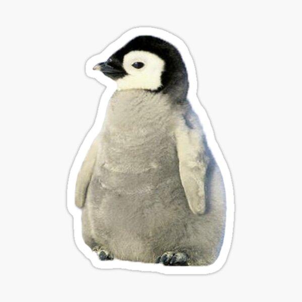 baby penguin Sticker