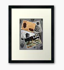 The Fossils Framed Print