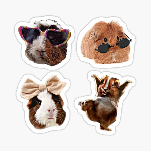 Funny Cute Guinea Pig Owner Pack Sticker