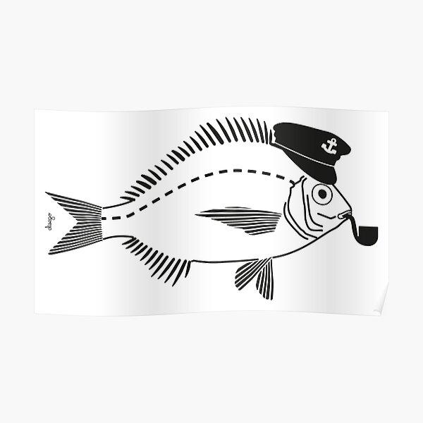 Sargo captain disego Poster