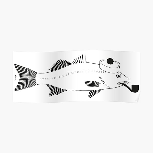 Sea bass disego Poster