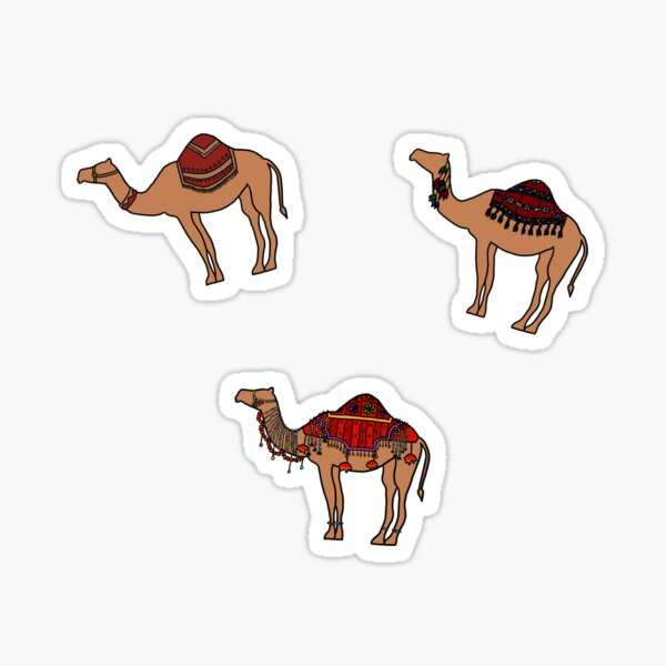 Camels of the World (3-Pack) Sticker
