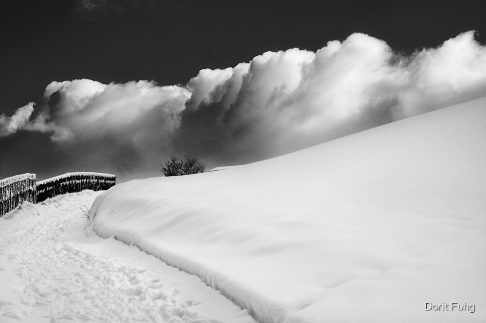 in the Ore Mountains by Dorit Fuhg