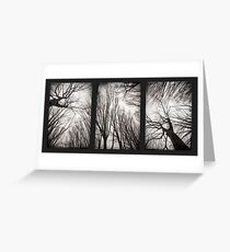 treeology in black&white Greeting Card