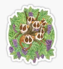 Monkey Loris Family Sticker
