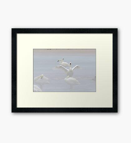 Foggy Ice Framed Print