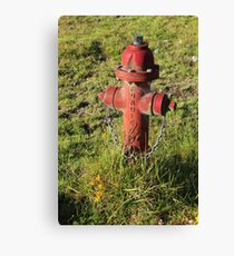 Hydrant in a Field Canvas Print