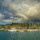Early Morning After the Rain, at Evans Bay Marina by SeeOneSoul