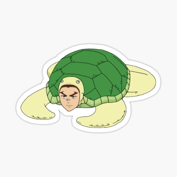 hairo as a turtle  Sticker
