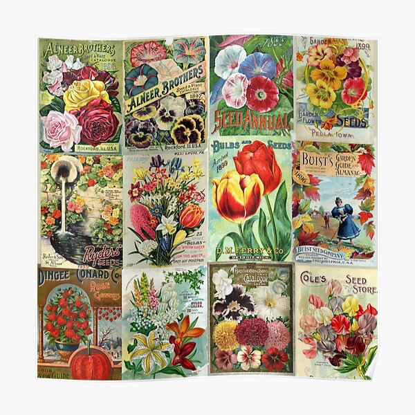 Vintage Flower Seed Packet Illustrations 1 Mosaic Poster