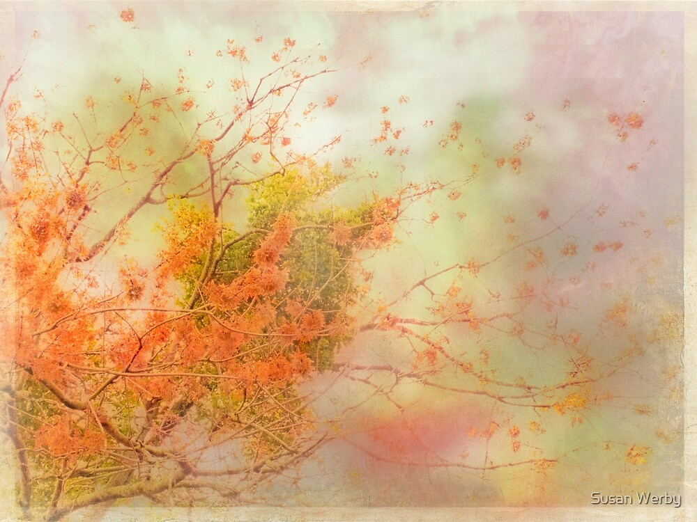 Essence of Life by Susan Werby