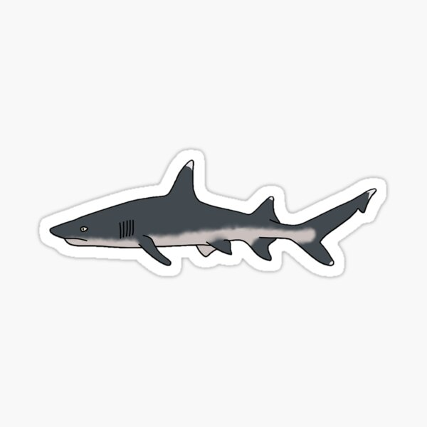 Oceanic White Tip Shark Sticker