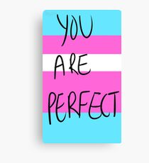 You are perfect- transgender Canvas Print