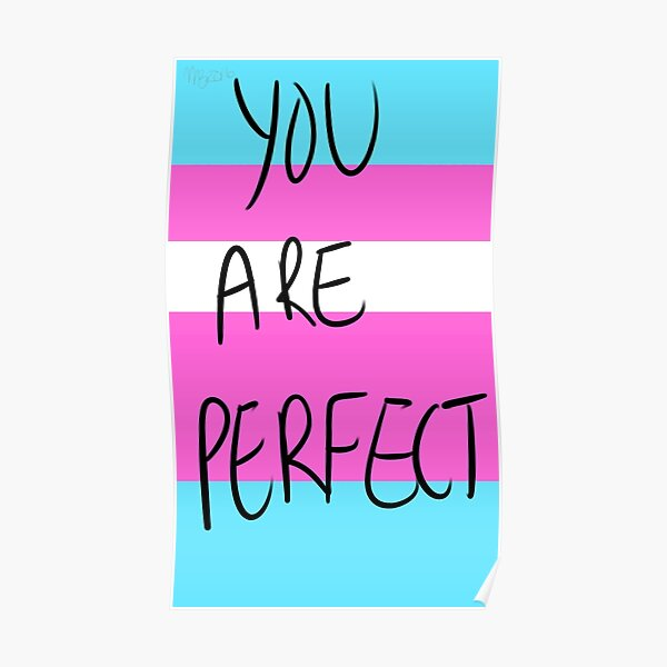 You are perfect- transgender Poster