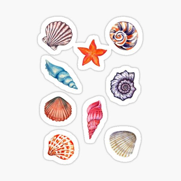 Coquillages fantaisie Sticker