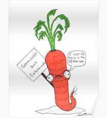 The prolific carrot Poster