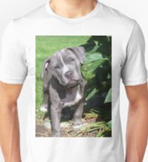 Gorgeous Baby Pitbull Puppy Dog (Head Tilted) Unisex T-Shirt