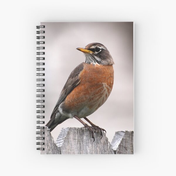 At A Glance Spiral Notebook