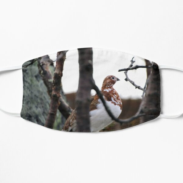 Willow Grouse Flat Mask