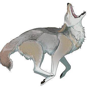 Coyote  by TashaDawn