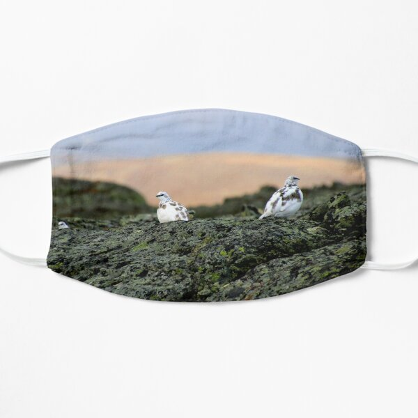 Rock Ptarmigan Flat Mask