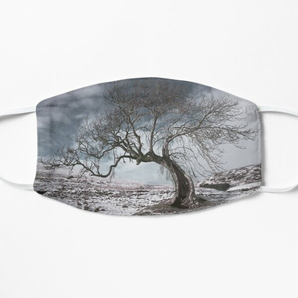 Frandy Tree in Winter Flat Mask