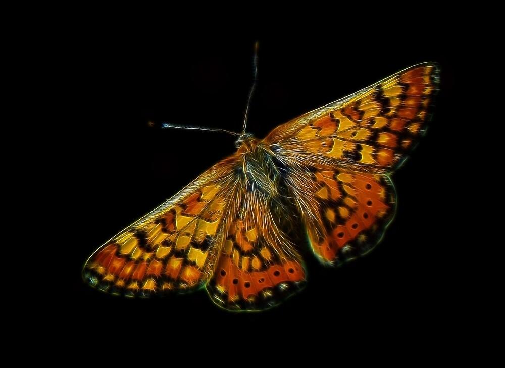 Meadow's Fractal Angel by Atılım GÜLŞEN
