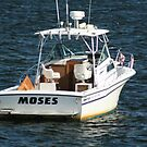 A Boat named Moses by Linda Jackson