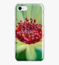 Living Daisy Stone in Green iPhone Case/Skin