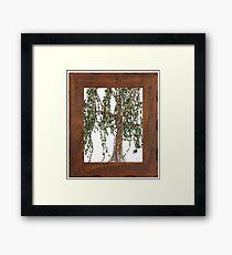 Full Summer Willow Framed Print