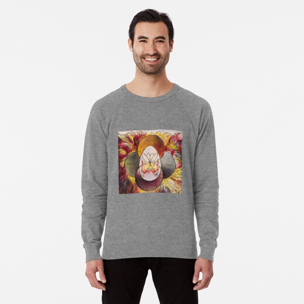 ssrco,lightweight_sweatshirt,mens,heather_grey_lightweight_raglan_sweatshirt