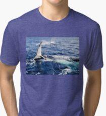 A Whale Of A Time Tri-blend T-Shirt