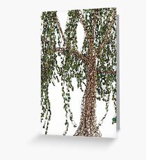 Summer Willow Tree - white Greeting Card