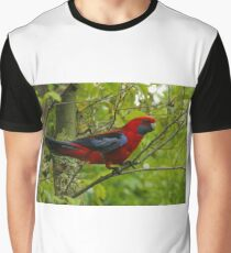 Crimson Rosella at O'Reilly's Graphic T-Shirt
