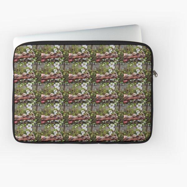 The garden snail (Helix aspersa)  By Yannis Lobaina  Laptop Sleeve