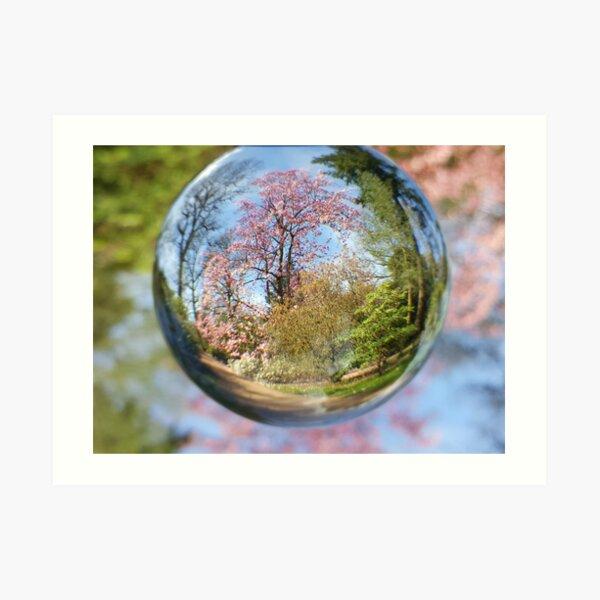 Spring Blossom Through The Lensball Art Print
