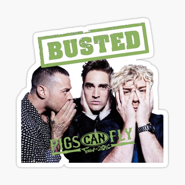 Busted Pigs Can Fly Sticker