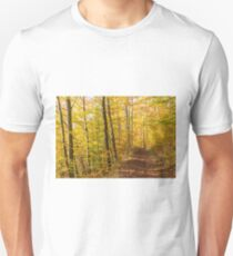 Enchanted Forest near Heiligenberg T-Shirt