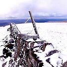 Whernside, Leaving the summit by mikebov