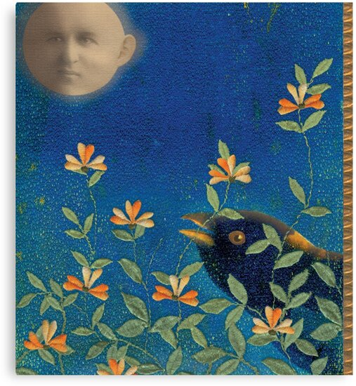 Night Garden by SusanSanford