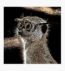 Steampunk Mongoose with Goggles and Attitude Photographic Print